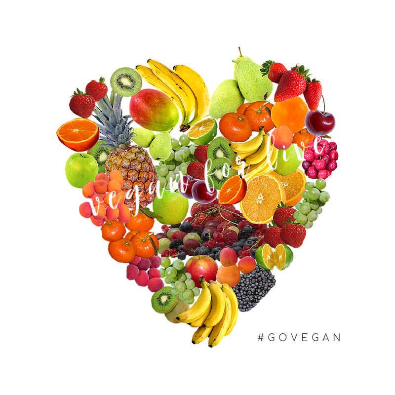 mein Weg zum Veganismus